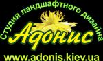 Студия ландшафтного дизайна «Адонис»